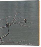 Swallows Bow Wood Print
