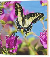 Swallowtail In Flight Wood Print