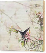 Swallowtail In Spring Wood Print