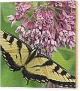 Swallowtail Notecard Wood Print