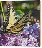 Swallowtail On Lilac Wood Print