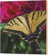 Swallowtail On Peony Wood Print