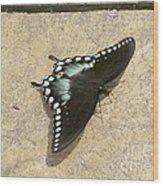 Swallowtail On The Rocks Wood Print