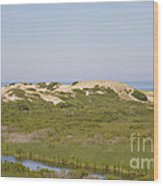 Swamp And Dunes Wood Print