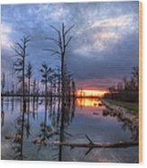Swamp At Dusk Wood Print
