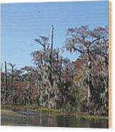 Swamp Serenity Wood Print