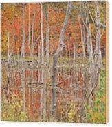 Swamp Colors Wood Print