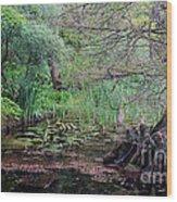 Swamp Garden Wood Print