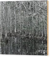 Swamp Greens Wood Print