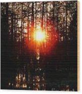 Swamp Light Wood Print