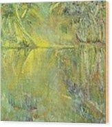 Swamp Sun Wood Print