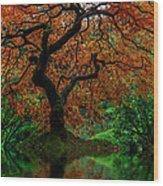 Swamped Japanese Wood Print