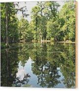Swampland Reflection At The Plantation Wood Print