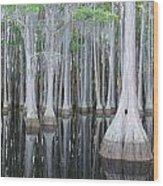 Swampy Reflections Wood Print