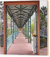 Swan And Dolphin Resort Walt Disney World 3 Panel Composite Wood Print