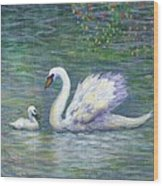 Swan And One Baby Wood Print