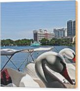 Swan Boats And Buildings Wood Print