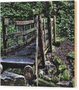 Swan Creek Footbridge Wood Print