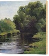 Swan Creek Wood Print by Janet King