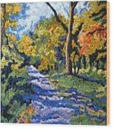 Swan Creek Pathway Wood Print