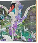 Swan Day Dream Wood Print by Alixandra Mullins