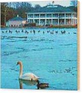 Swan Duck Geese Wood Print
