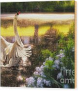 Swan Lake Wood Print by Lois Bryan