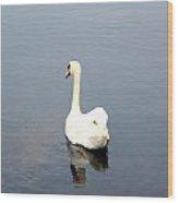 Swan Lake. Wood Print