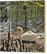 Swan Lake Watercolor Wood Print