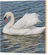 Swan On Blue Waves Wood Print