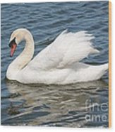Swan On Blue Waves With Border Wood Print