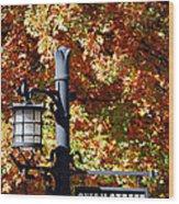 Swan Street Wood Print