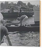 Swan Upping Picturesque Ceremony That Has Not Changed For Wood Print