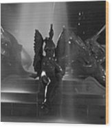Swann Fountain At Night In Black And White Wood Print