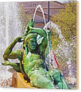 Swann Fountain Gods Wood Print