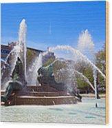 Swann Fountain Wood Print