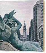 Swann Fountain Statue Wood Print