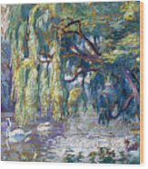 Swans Family . Forest Of Boulogne  Wood Print