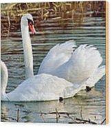 Swans Wood Print by Gary Heller