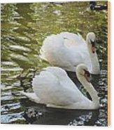 Swans In Love Wood Print