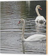 Swans On The Lake - Limited Edition Wood Print