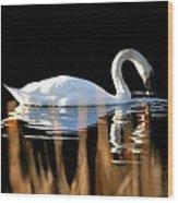 Swan River Wood Print