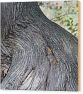 Swaying  Wood Print