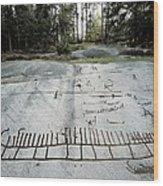 Sweden. Tanum. Petroglyphs Of Tanum Wood Print