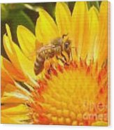 Sweet Bee Wood Print