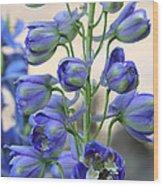 Sweet Delphinium Wood Print