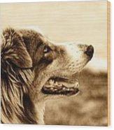 Sweet Doggie Wood Print