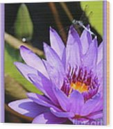 Sweet Dragonfly On Purple Water Lily Wood Print