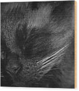 Sweet Dreams In Black And White Wood Print