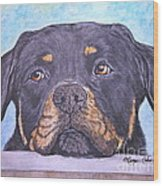 Rottweiler's Sweet Face Wood Print